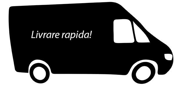 Livrare Rapida 24-48 ore